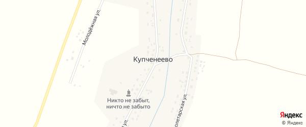 Школьная улица на карте села Купченеево с номерами домов