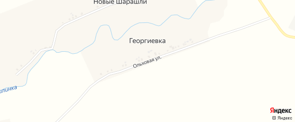 Ольховая улица на карте деревни Георгиевки с номерами домов
