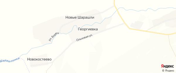 Карта деревни Георгиевки в Башкортостане с улицами и номерами домов