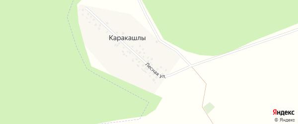 Лесная улица на карте деревни Каракашлы с номерами домов
