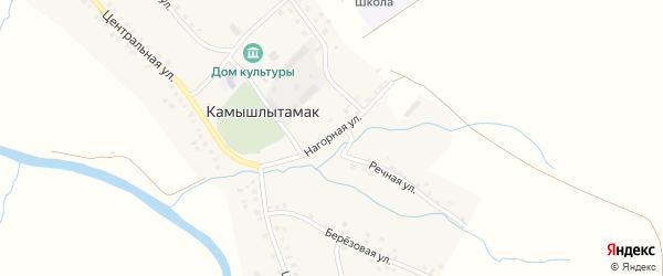 Нагорная улица на карте села Камышлытамака с номерами домов