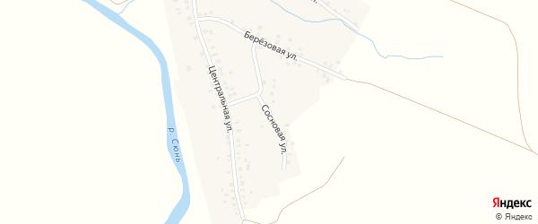 Сосновая улица на карте села Камышлытамака с номерами домов