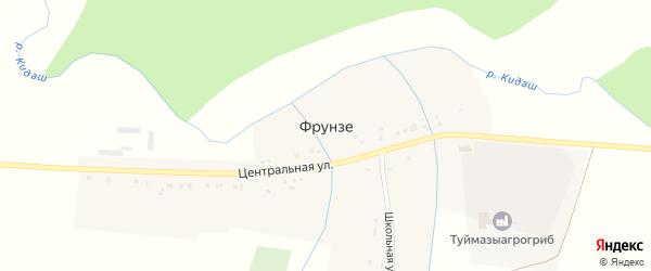 Центральная улица на карте деревни Фрунзе с номерами домов