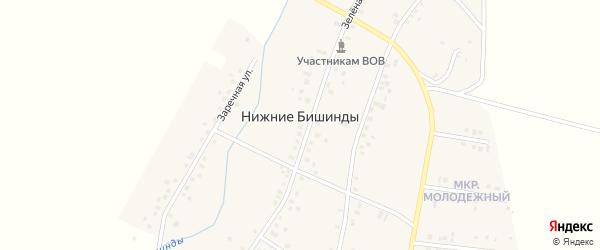 Степная улица на карте села Нижние Бишинды с номерами домов