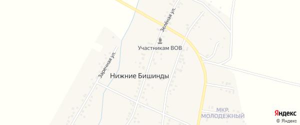 Зеленая улица на карте села Нижние Бишинды с номерами домов
