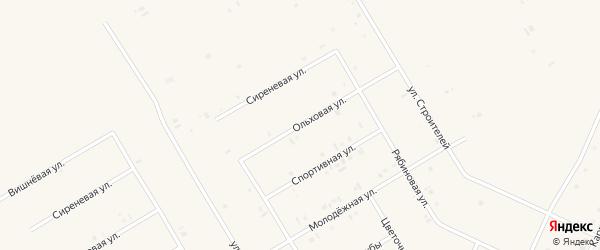 Ольховая улица на карте села Бакалы с номерами домов