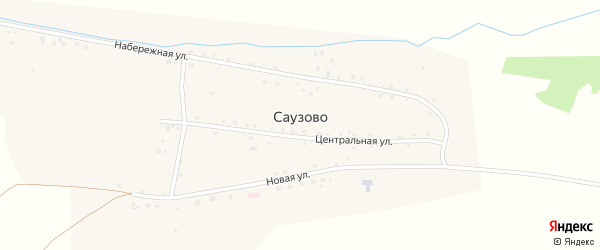 Лесная улица на карте деревни Саузово с номерами домов