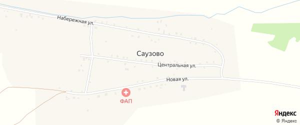Центральная улица на карте деревни Саузово с номерами домов