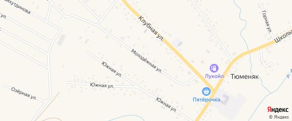 Молодежная улица на карте села Тюменяка с номерами домов