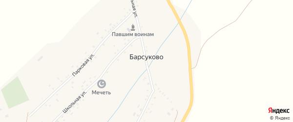Центральная улица на карте села Барсуково с номерами домов