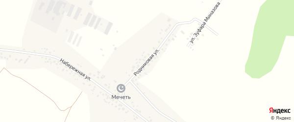 Родниковая улица на карте села Зигитяка с номерами домов