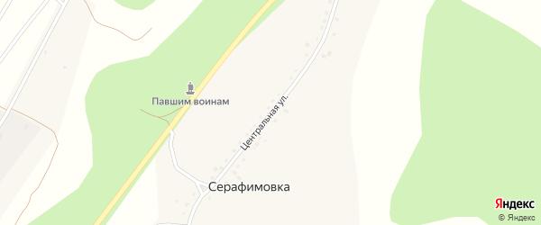 Центральная улица на карте села Серафимовки с номерами домов