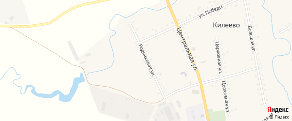Родниковая улица на карте села Килеево с номерами домов