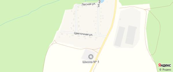 Цветочная улица на карте деревни Источника с номерами домов