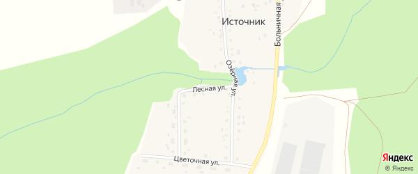 Лесная улица на карте деревни Источника с номерами домов