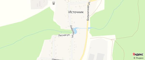 Озерная улица на карте деревни Источника с номерами домов