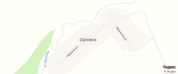 Нижняя улица на карте деревни Орловки с номерами домов