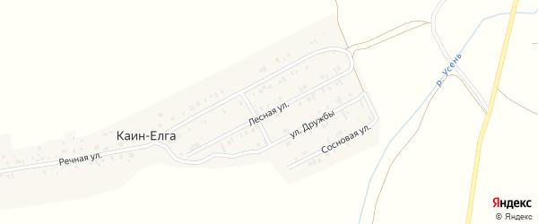 Лесная улица на карте деревни Каин-Елга с номерами домов