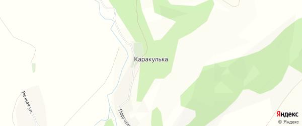 Карта деревни Каракульки в Башкортостане с улицами и номерами домов