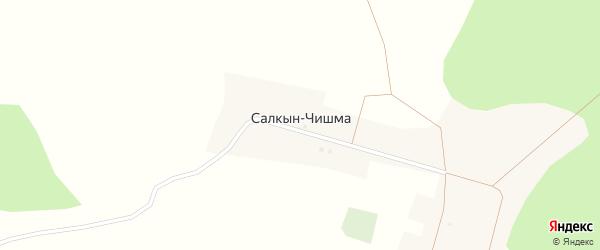 Березовая улица на карте деревни Салкына-Чишма с номерами домов