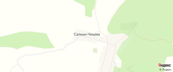 Карта деревни Салкына-Чишма в Башкортостане с улицами и номерами домов