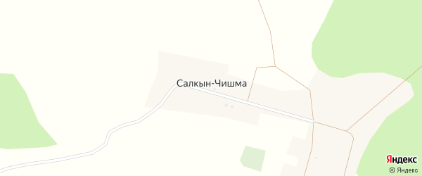 Лесная улица на карте деревни Салкына-Чишма с номерами домов