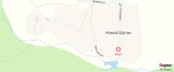 Лесная улица на карте деревни Нового Шугана с номерами домов