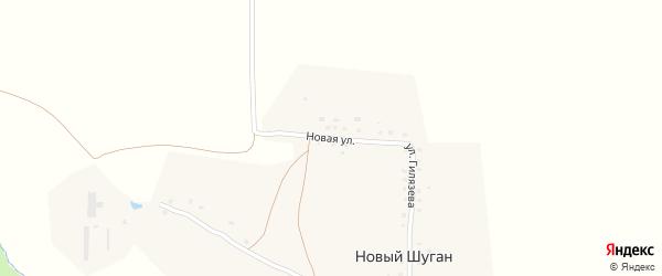 Новая улица на карте деревни Нового Шугана с номерами домов