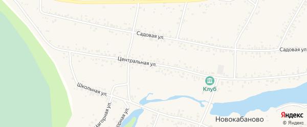 Центральная улица на карте села Новокабаново с номерами домов