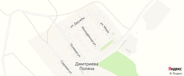 Молодежная улица на карте деревни Дмитриевой Поляны с номерами домов