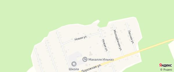 Новая улица на карте деревни Саузбаша с номерами домов