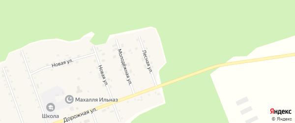 Лесная улица на карте деревни Саузбаша с номерами домов