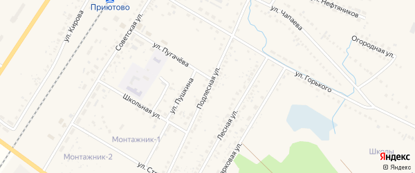 Подлесная улица на карте поселка Приютово с номерами домов