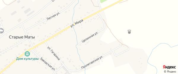 Целинная улица на карте села Старые Маты с номерами домов
