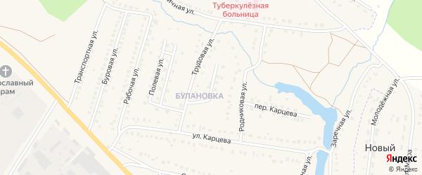 Трудовой переулок на карте поселка Приютово с номерами домов