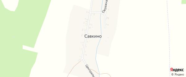 Центральная улица на карте деревни Савкино с номерами домов