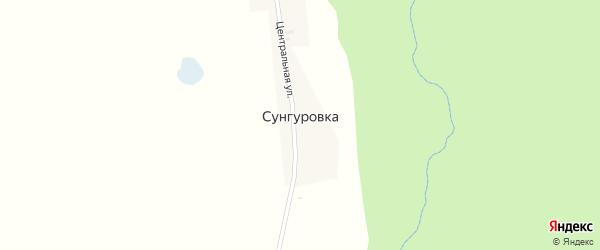 Центральная улица на карте деревни Сунгуровки с номерами домов