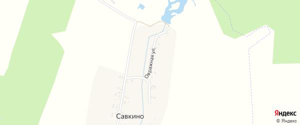 Овражная улица на карте деревни Савкино с номерами домов