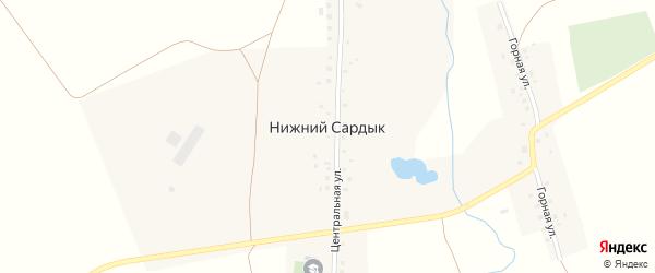 Центральная улица на карте деревни Нижнего Сардыка с номерами домов