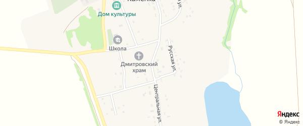 Центральная улица на карте села Каменки с номерами домов