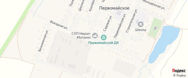 Въездная улица на карте Первомайского села с номерами домов