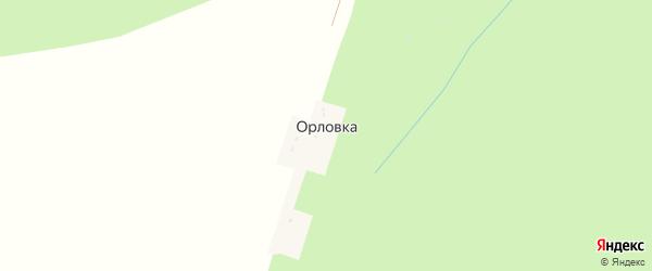 Центральная улица на карте деревни Орловки с номерами домов