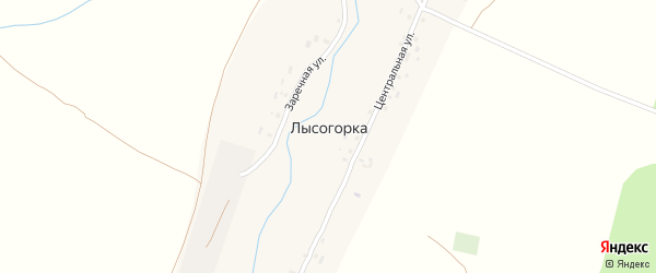 Центральная улица на карте деревни Лысогорки с номерами домов
