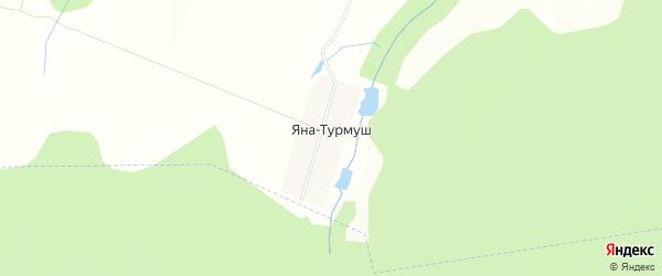 Карта деревни Яны-Турмуш в Башкортостане с улицами и номерами домов