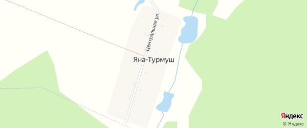 Центральная улица на карте деревни Яны-Турмуш с номерами домов