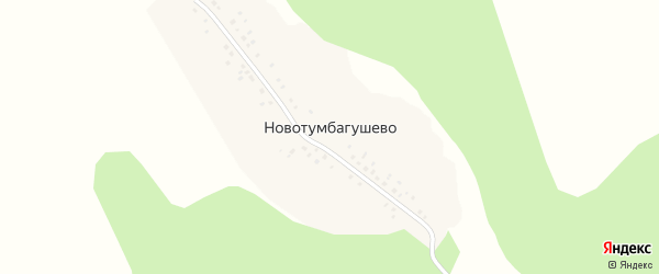 Лесная улица на карте деревни Новотумбагушево с номерами домов
