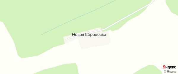 Пушкинская улица на карте деревни Новой Сбродовки с номерами домов