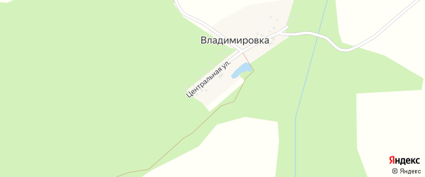 Центральная улица на карте деревни Владимировки с номерами домов