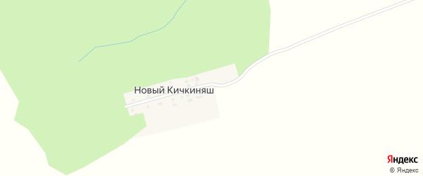 Цветочная улица на карте деревни Нового Кичкиняша с номерами домов