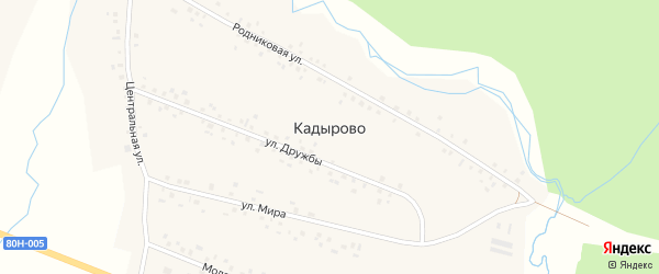 Центральная улица на карте села Кадырово с номерами домов